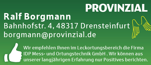 Internetbanner Borgmann_idp